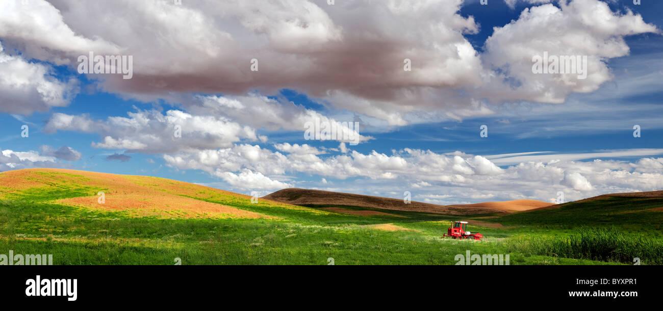 Lenticchia campo di fagioli e il trattore. Il Palouse, Washington Immagini Stock