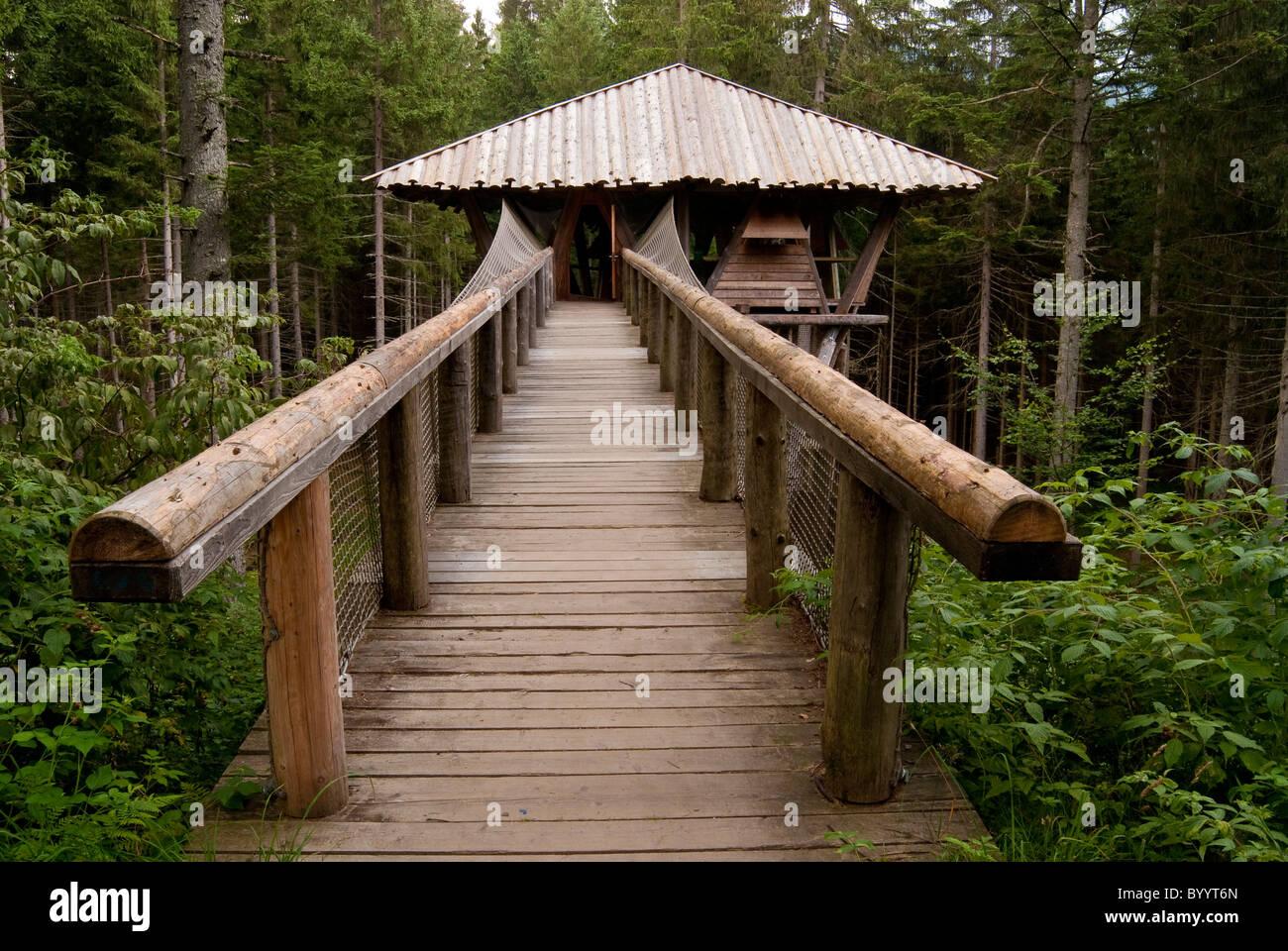 Argomento capanna a Falkenstein Wilderness Camp, Parco Nazionale della Foresta Bavarese, Baviera, Germania. Immagini Stock