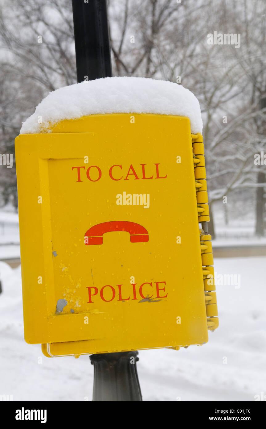 Central Park, Manhattan, tempesta di neve, Gennaio 25, 2011, New York City, Emergenza Telefono 911 Immagini Stock