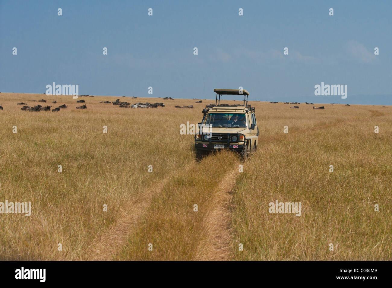 Veicolo fuoristrada nel Serengeti, safari game drive, Tanzania Africa Immagini Stock
