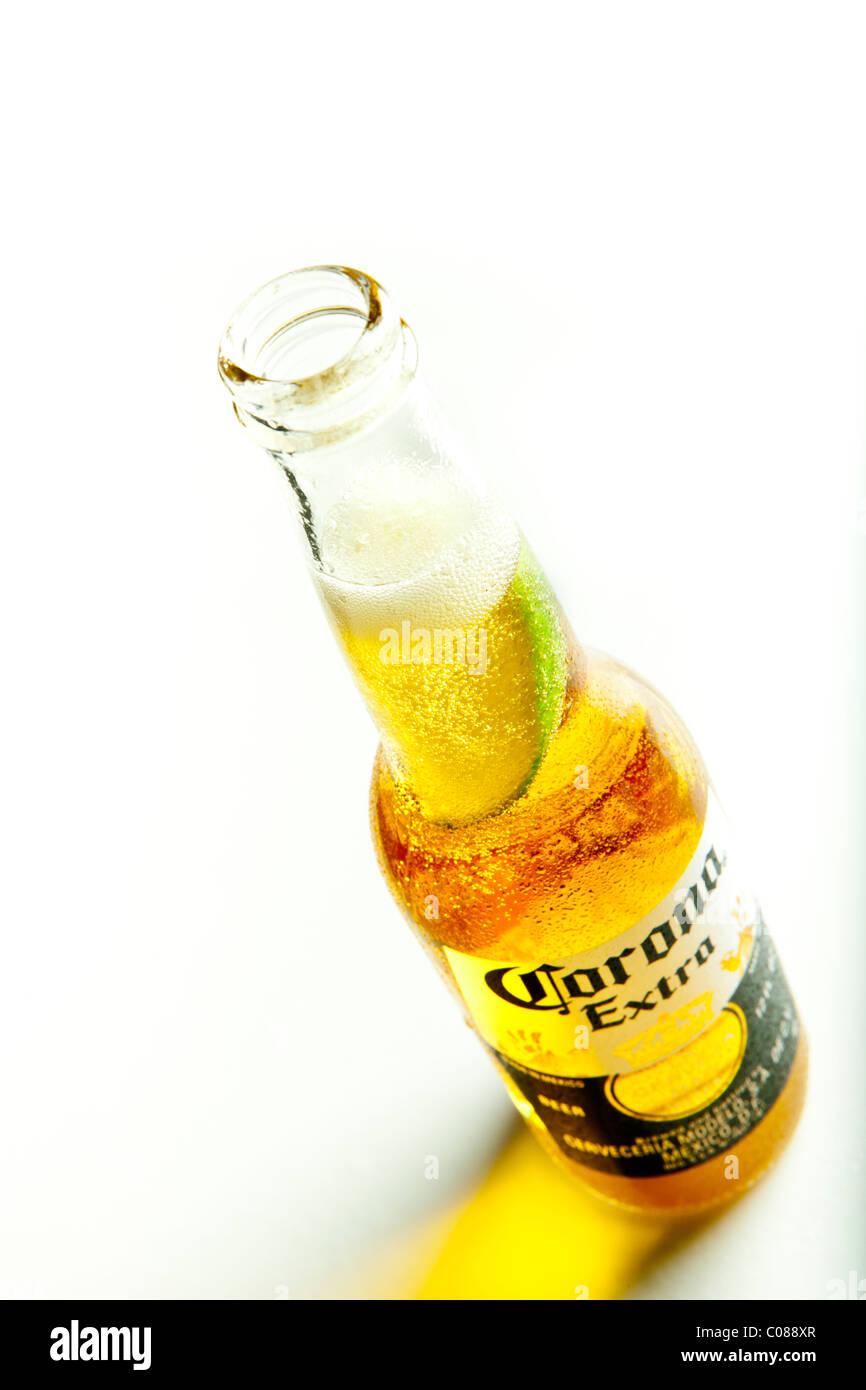 Una bottiglia di birra Corona con una fetta di limone su uno sfondo bianco. Immagini Stock