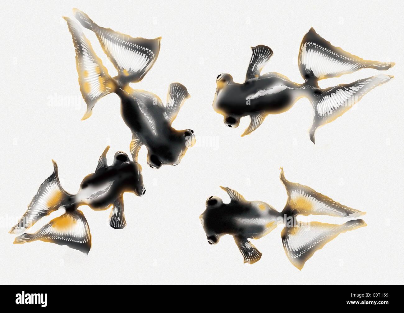 Modello della pittura giapponese, Goldfish Immagini Stock