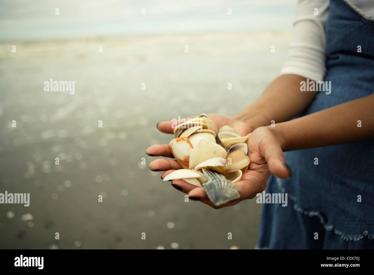 Punjabi donna detiene raccolta di conchiglie da spiaggia, Manawatu Affitto, Nuova Zelanda. Immagini Stock