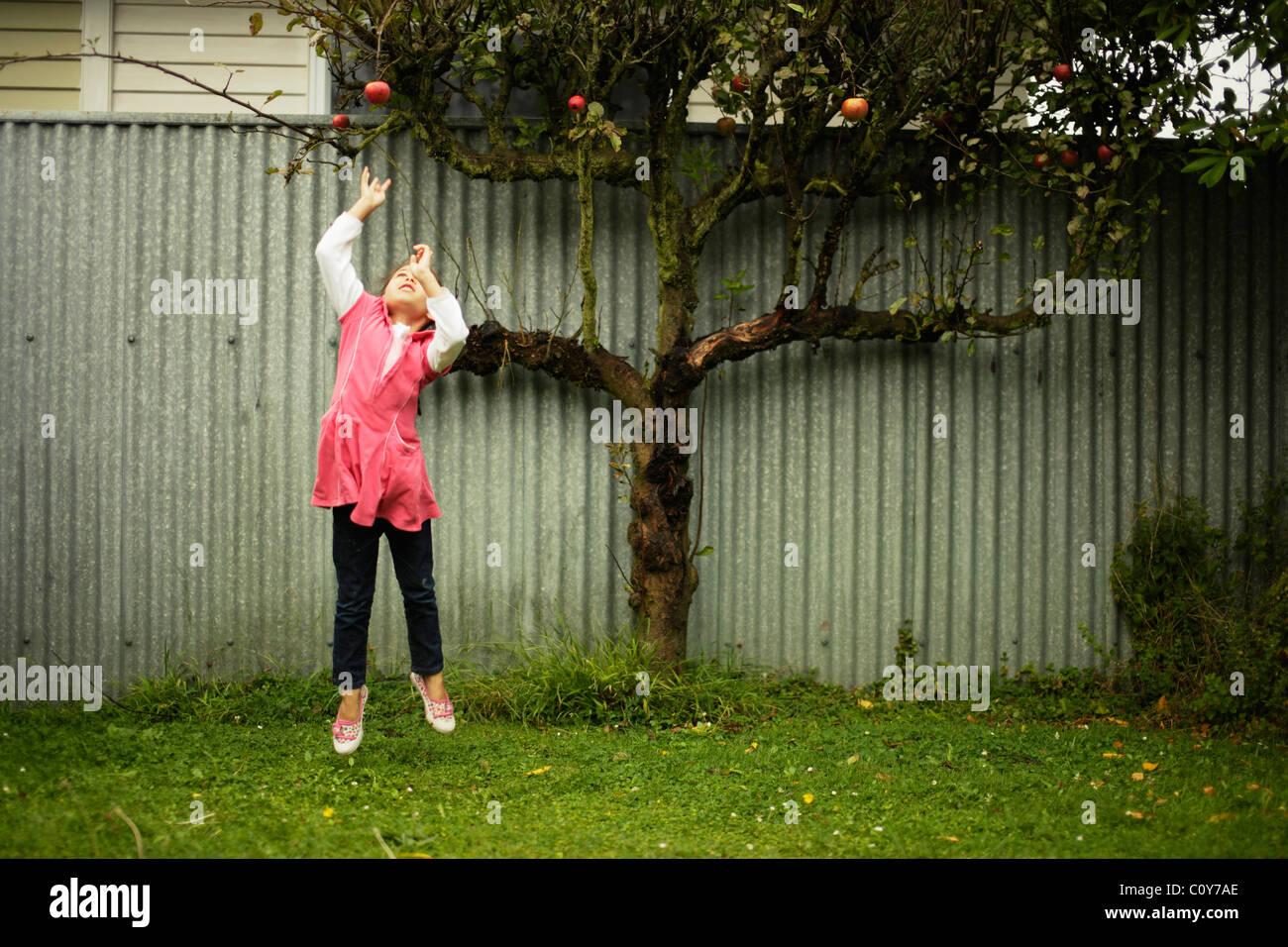 Ragazzina salta in alto e cerca di agguantare la mela rossa su albero Immagini Stock