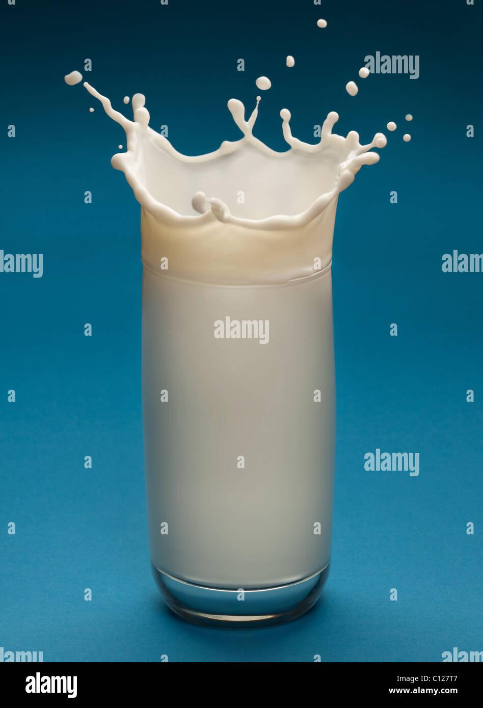 Schizzi di latte dal vetro su uno sfondo blu Immagini Stock