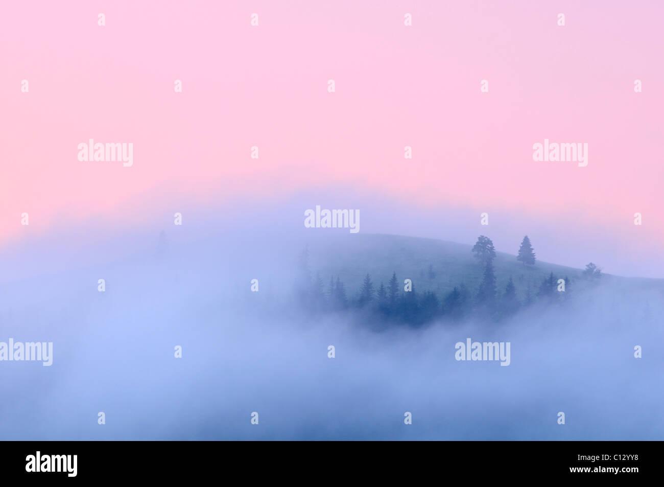 Paesaggio in area dzembronya in Ucraina all'alba Immagini Stock
