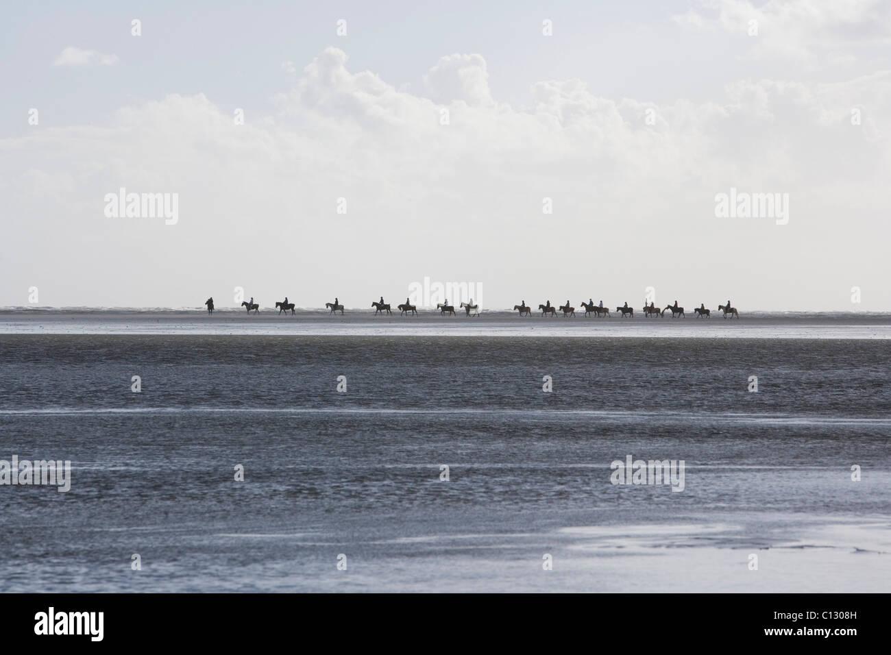 Gruppo di piloti in lontananza sulla spiaggia Immagini Stock