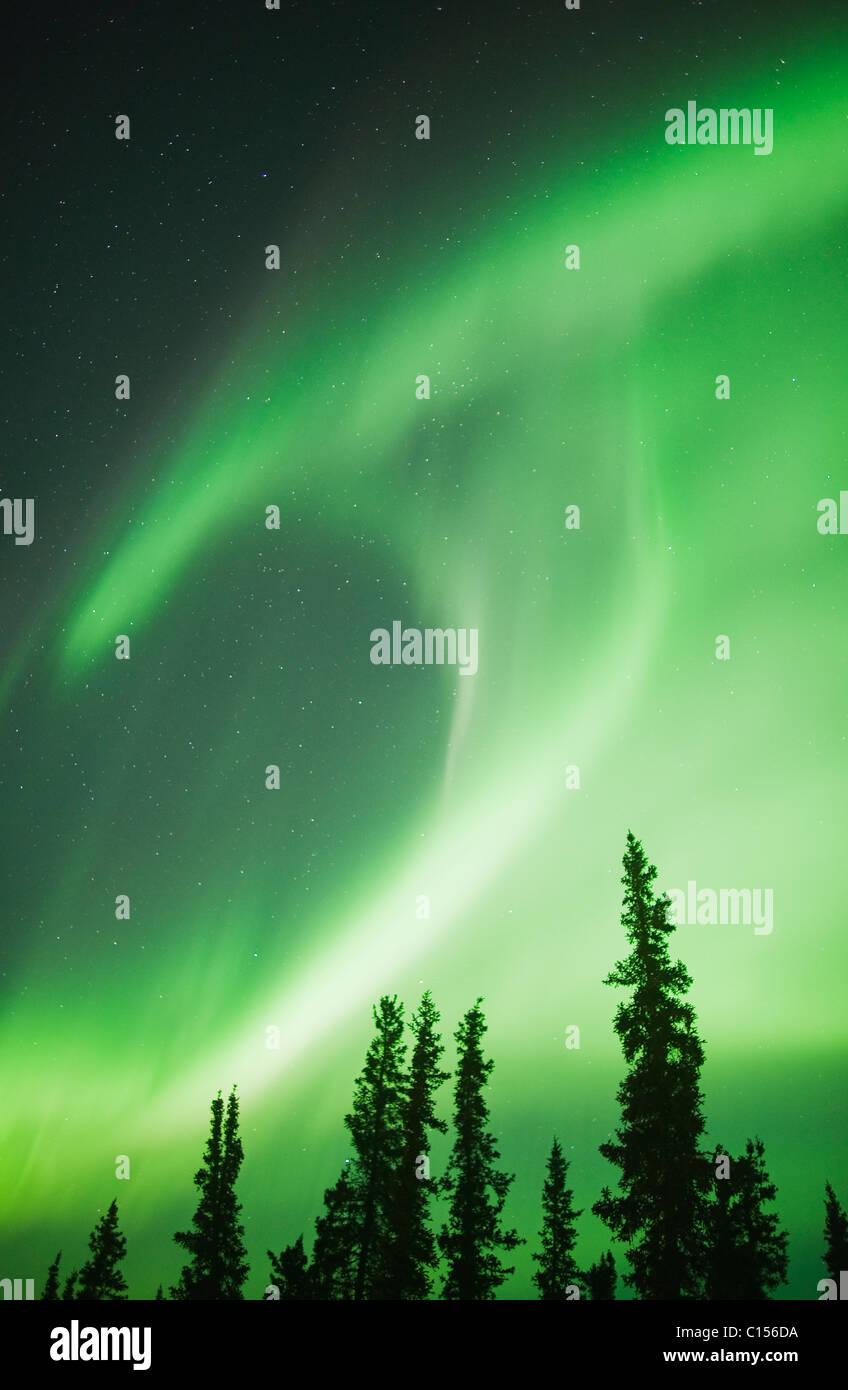 Aurora Boreale o luci del nord, nord-Ovest Territori, CANADA Immagini Stock
