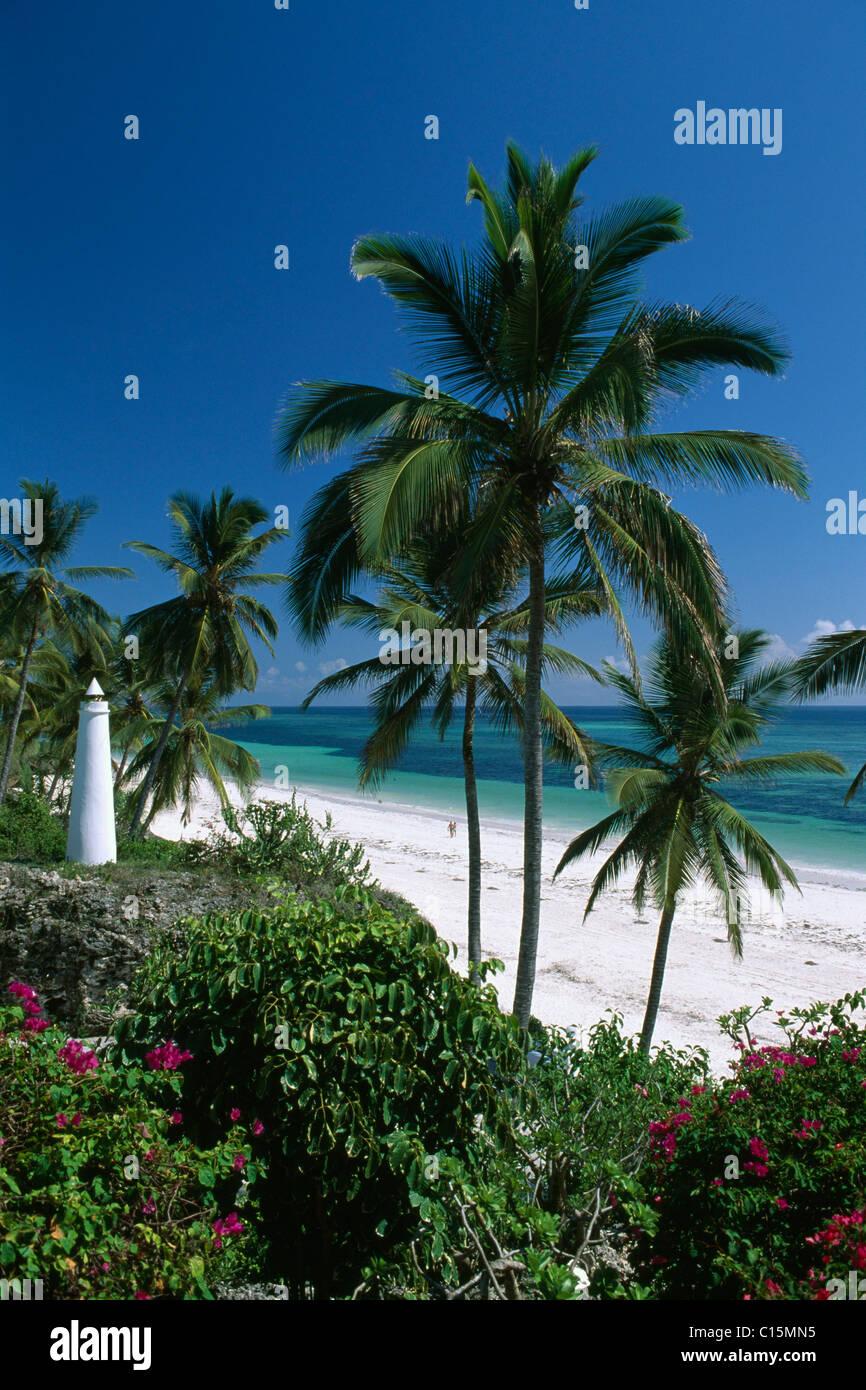Le palme a Diani Beach a Leisure Lodge Hotel, Kenya, Africa Immagini Stock