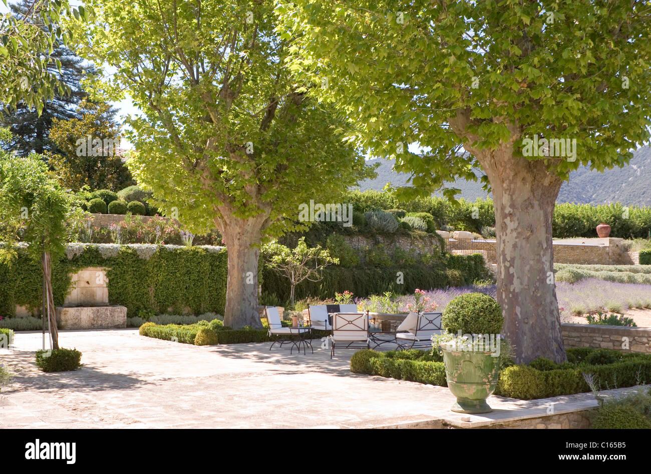 Grandi Alberi Da Giardini piano di grandi alberi in giardino provenzale con topiaria