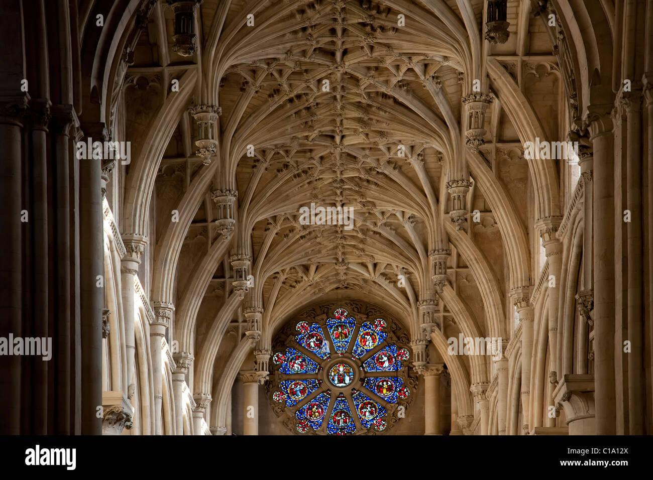 In vetro colorato e la nervatura-soffitto della cattedrale di Christ Church di Oxford University, Oxfordshire, England, Immagini Stock