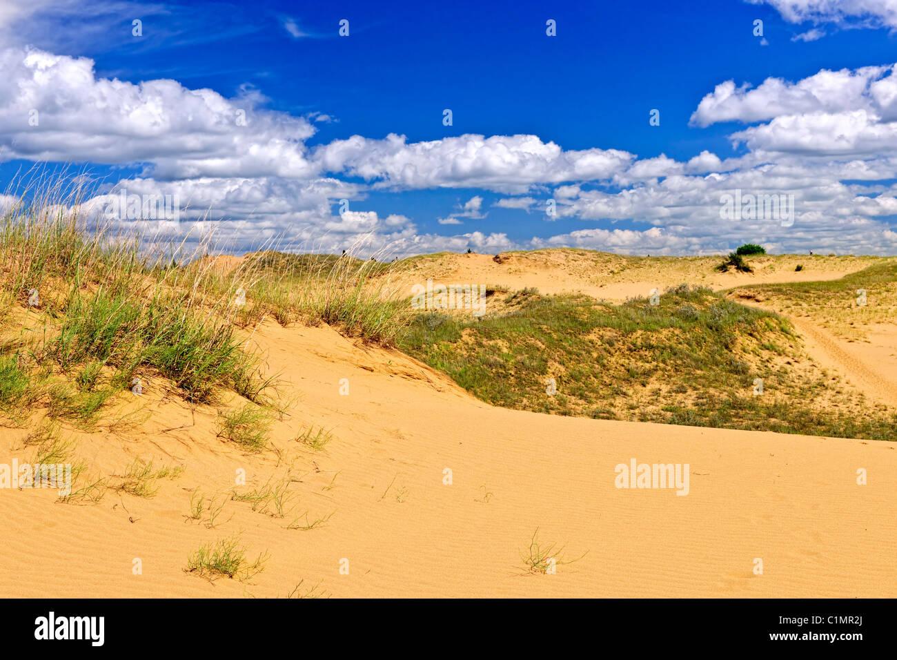 Paesaggio di spirito dune di sabbia in boschi di abete rosso Parco Provinciale, Manitoba, Canada Immagini Stock