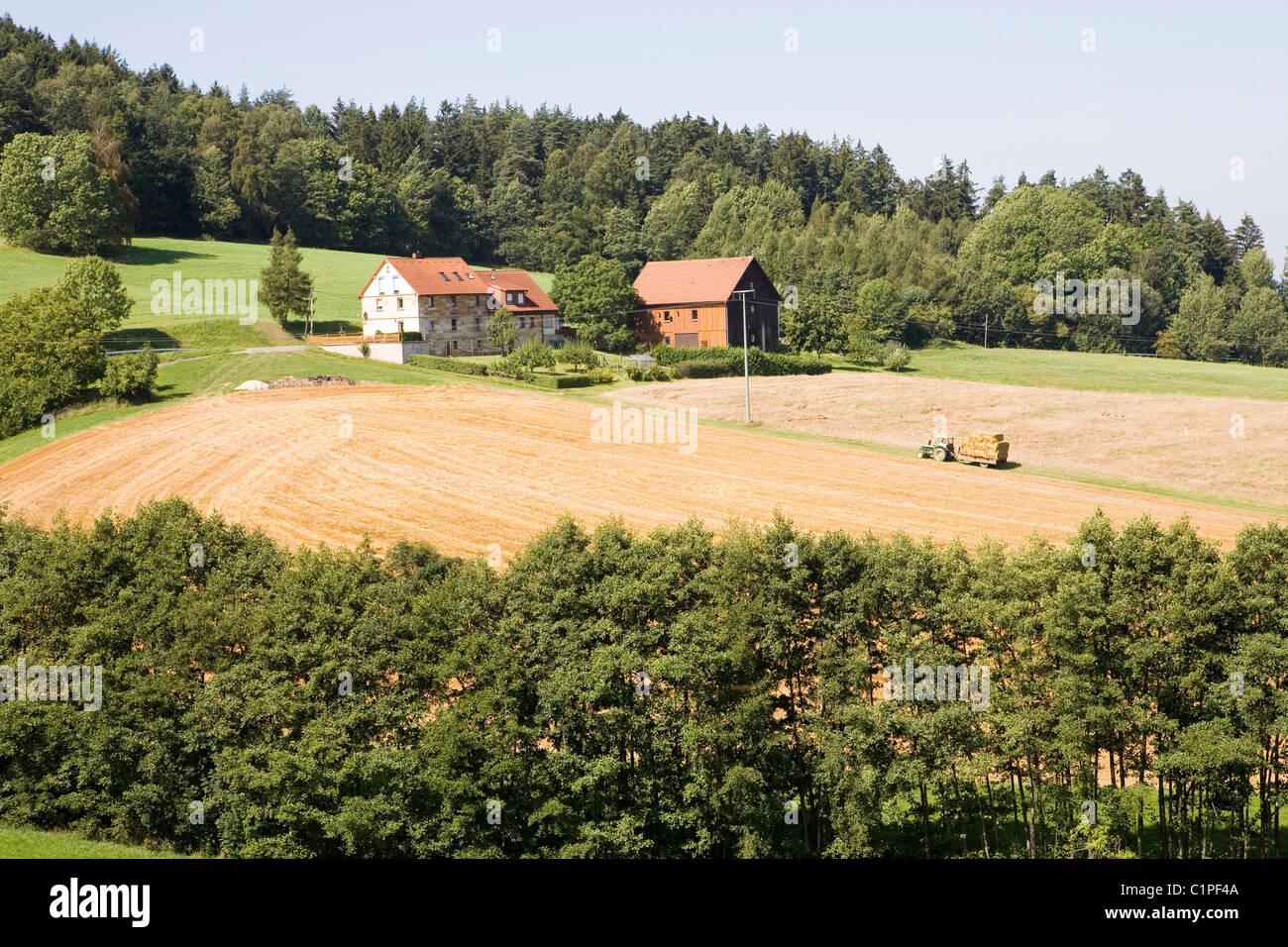 In Germania, in Baviera, Bayreuth, azienda agricola e campo di raccolto Immagini Stock