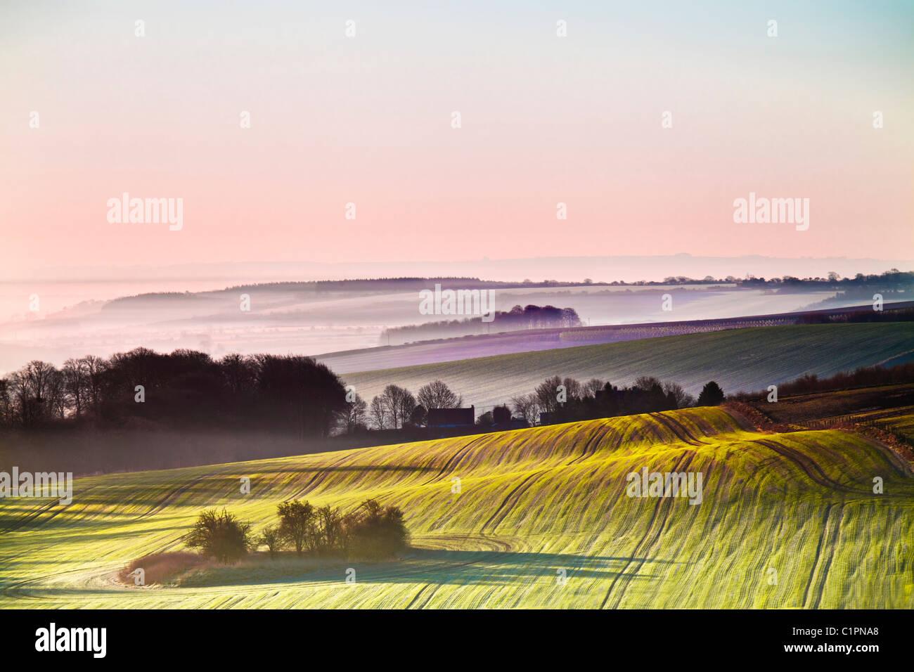 Una bella misty alba sui bassi di Marlborough, nel Wiltshire, Inghilterra, Regno Unito Immagini Stock