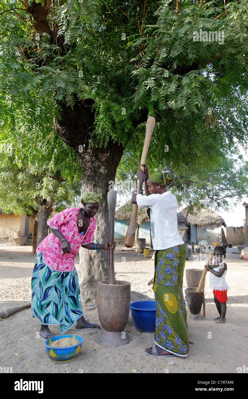 Donna e bambino pounding miglio, sorgoum, mais utilizzando mortaio e pestel. Senegal Immagini Stock