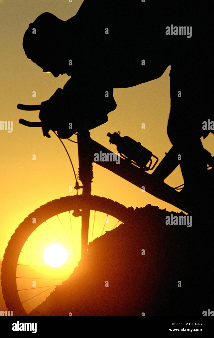 Silhouette di persona mountain bike Immagini Stock