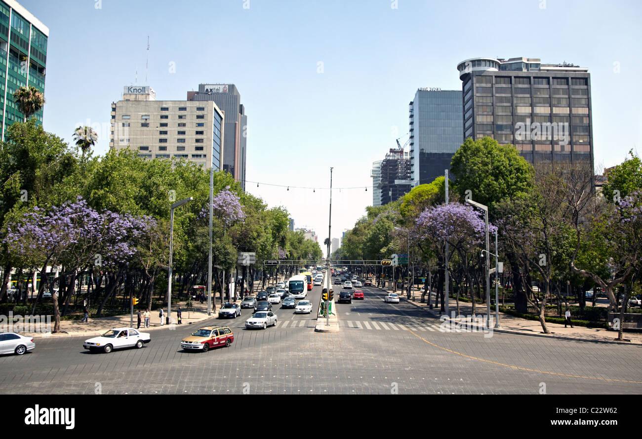 Paseo De La Reforma Città Del Messico Immagini Stock