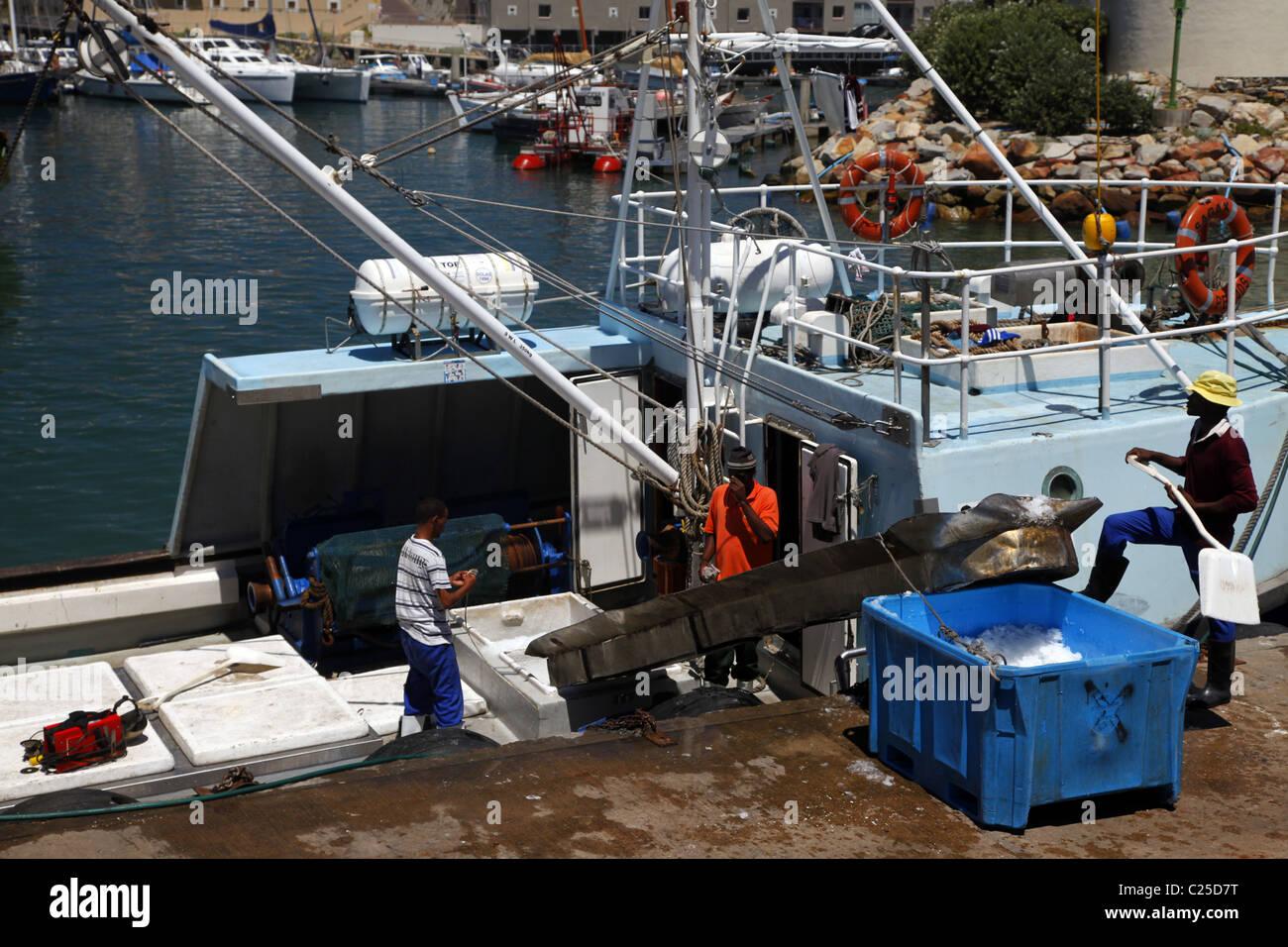 Barca da pesca ghiaccio CARICHI DI ST. Francesco Harbour Eastern Cape SUD AFRICA 26 Gennaio 2011 Immagini Stock