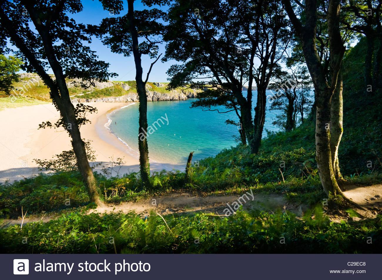 Barafundle Bay, Il Pembrokeshire Coast National Park, nel Galles del Sud. Immagini Stock