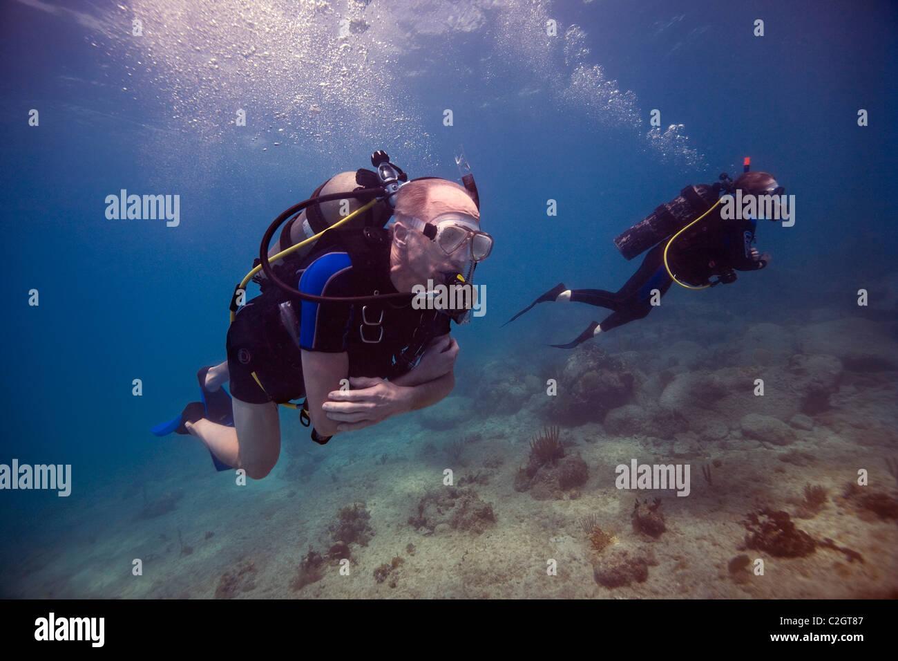 Due subacquei immersioni vicino a English Harbour, Antigua. Foto Stock