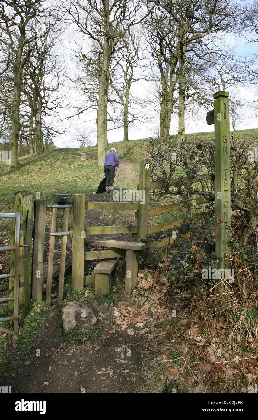 Una donna dog walker avendo appena attraversato un stile con il suo cane passando attraverso un cancello del cane Immagini Stock