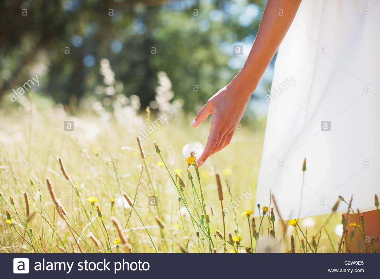 Donna che cammina attraverso il campo Immagini Stock