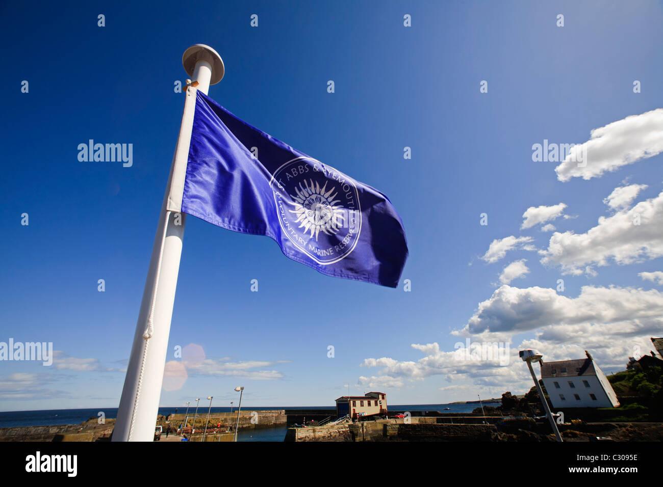 La bandiera del St. Abbs e Eyemouth volontaria Riserva Marina sventola al vento nella St. Abbs Harbour, Berwickshire. Immagini Stock
