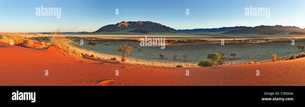 Vista Panoramica che mostra l'ecologia unica di sud-ovest il deserto del Namib o pro-Namib. NamibRand Riserva Immagini Stock