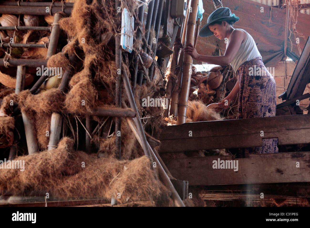 Una donna che lavora per la produzione delle fibre di cocco utilizzate nella realizzazione di materassi, BANG SAPHAN, Immagini Stock