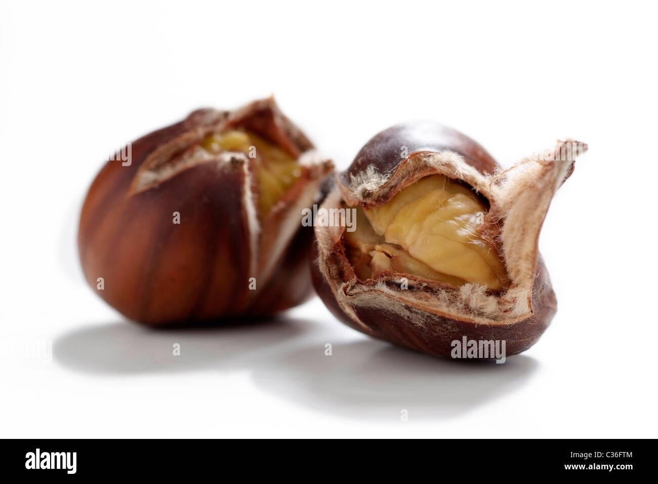 Singolo sweet chestnut Immagini Stock