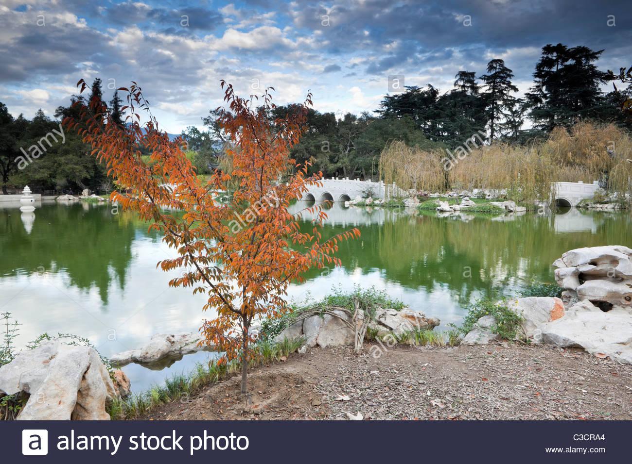 Ying Fang Hu / Lago di fragranza riflessa nel giardino cinese a Huntington, San Marino, California Immagini Stock