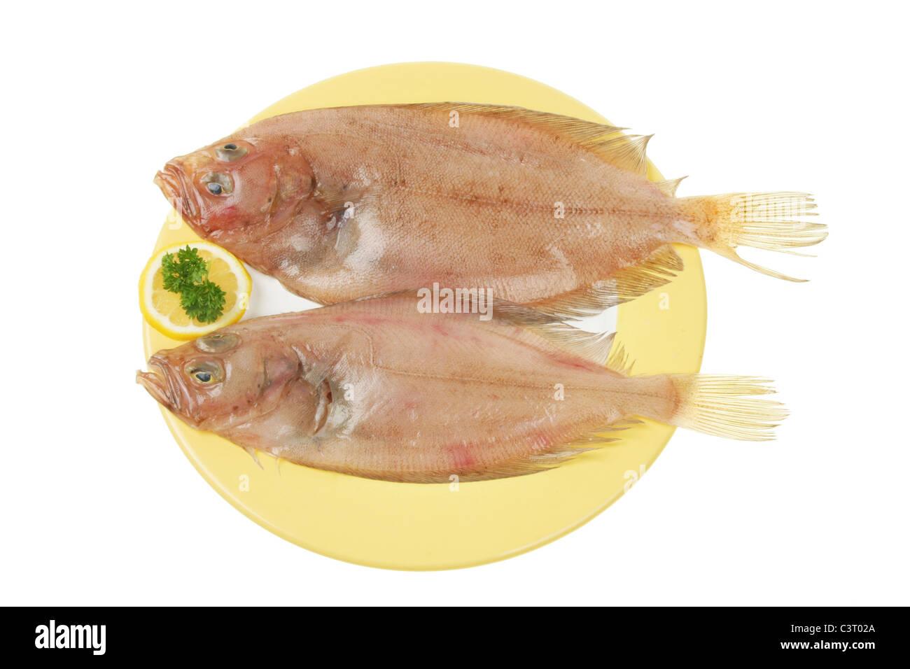 Due Fresche Di Rombo Giallo Pesce Piatto Unico Su Una Piastra