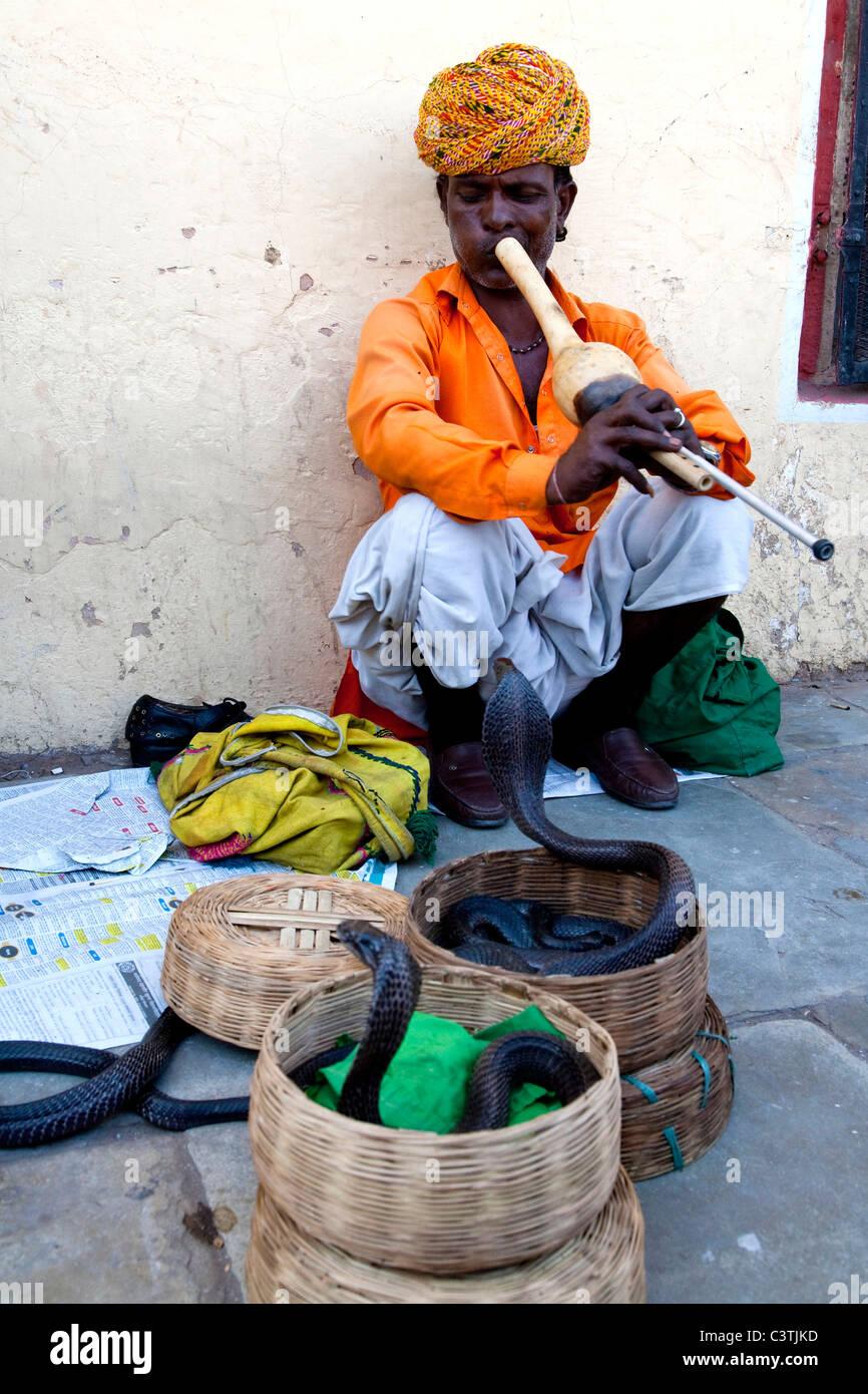 Il serpente incantatore, Jaipur, Rajasthan, India, Asia Immagini Stock