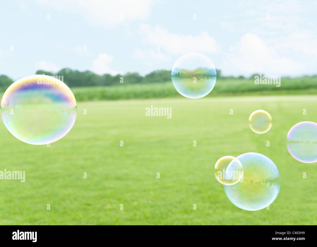 Campo di erba e bolle Immagini Stock