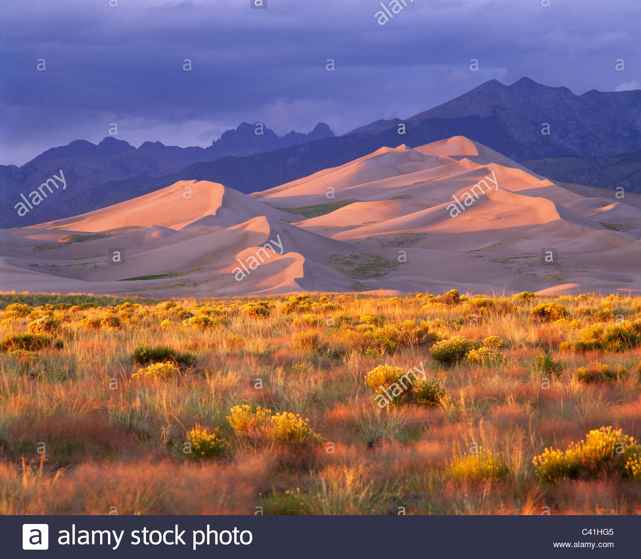 Grandi dune di sabbia del Parco Nazionale e preservare, Colorado. Immagini Stock