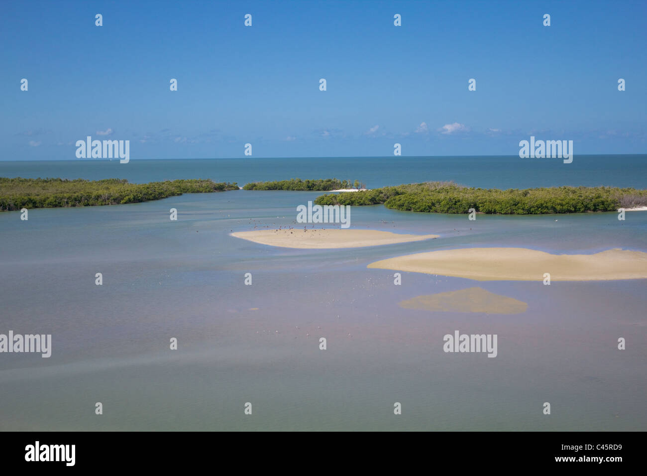 Ten Thousand Islands area a sud di Marco Island Florida West Coast. Immagini Stock