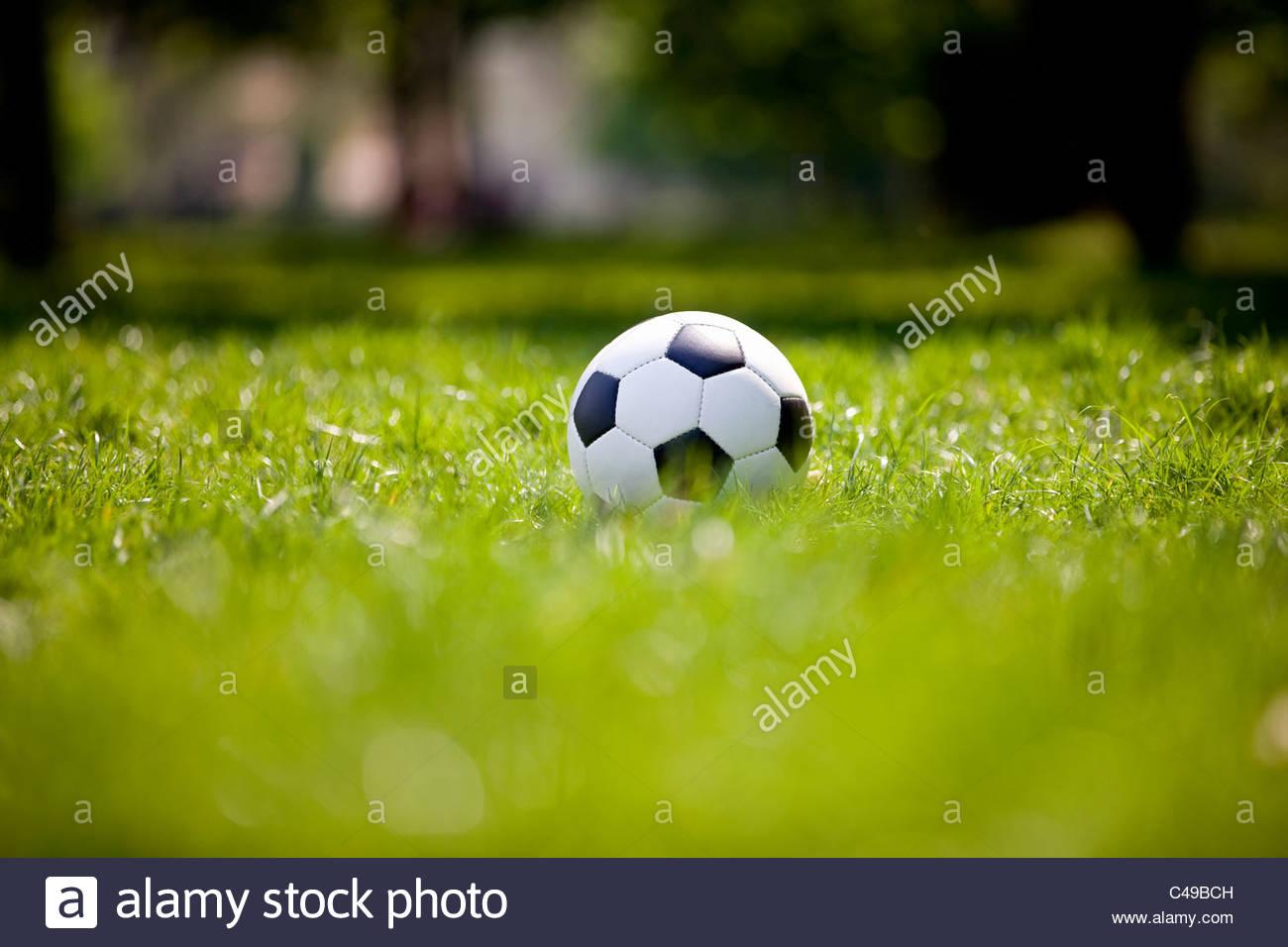 Un campo di calcio su prato Immagini Stock