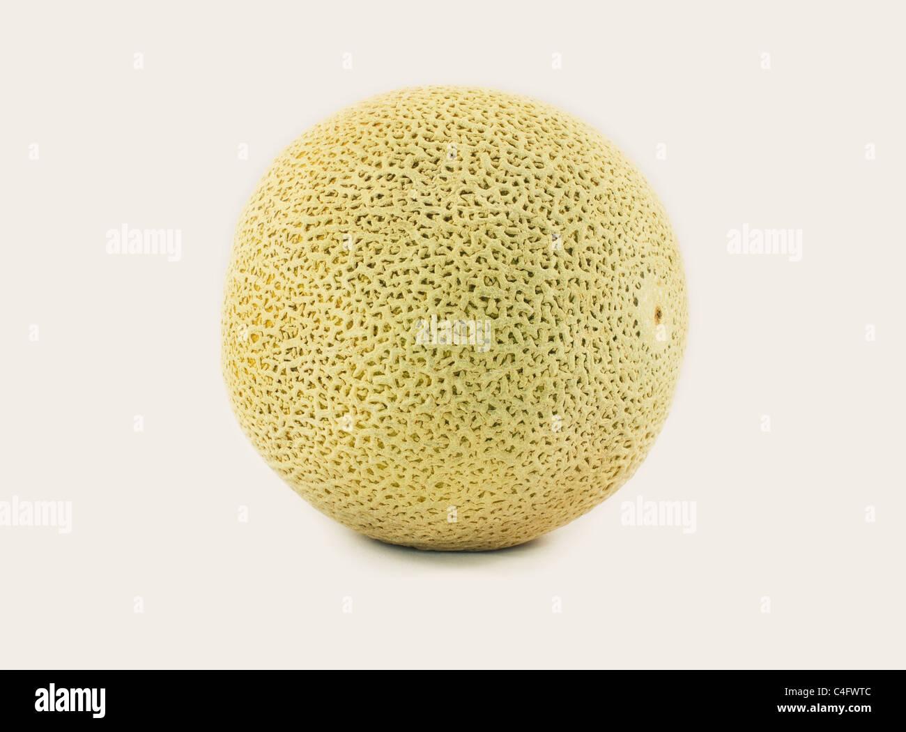 Singola impresa tutto mature con la buccia intonso melone. Immagini Stock