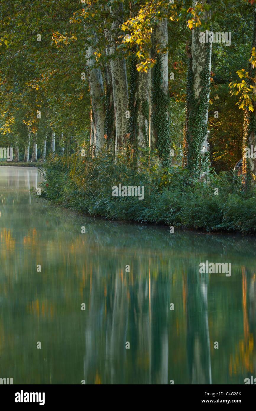 Il Canal du Midi nr Castelnaudary, Aude, Languedoc-Rousillon, Francia Immagini Stock