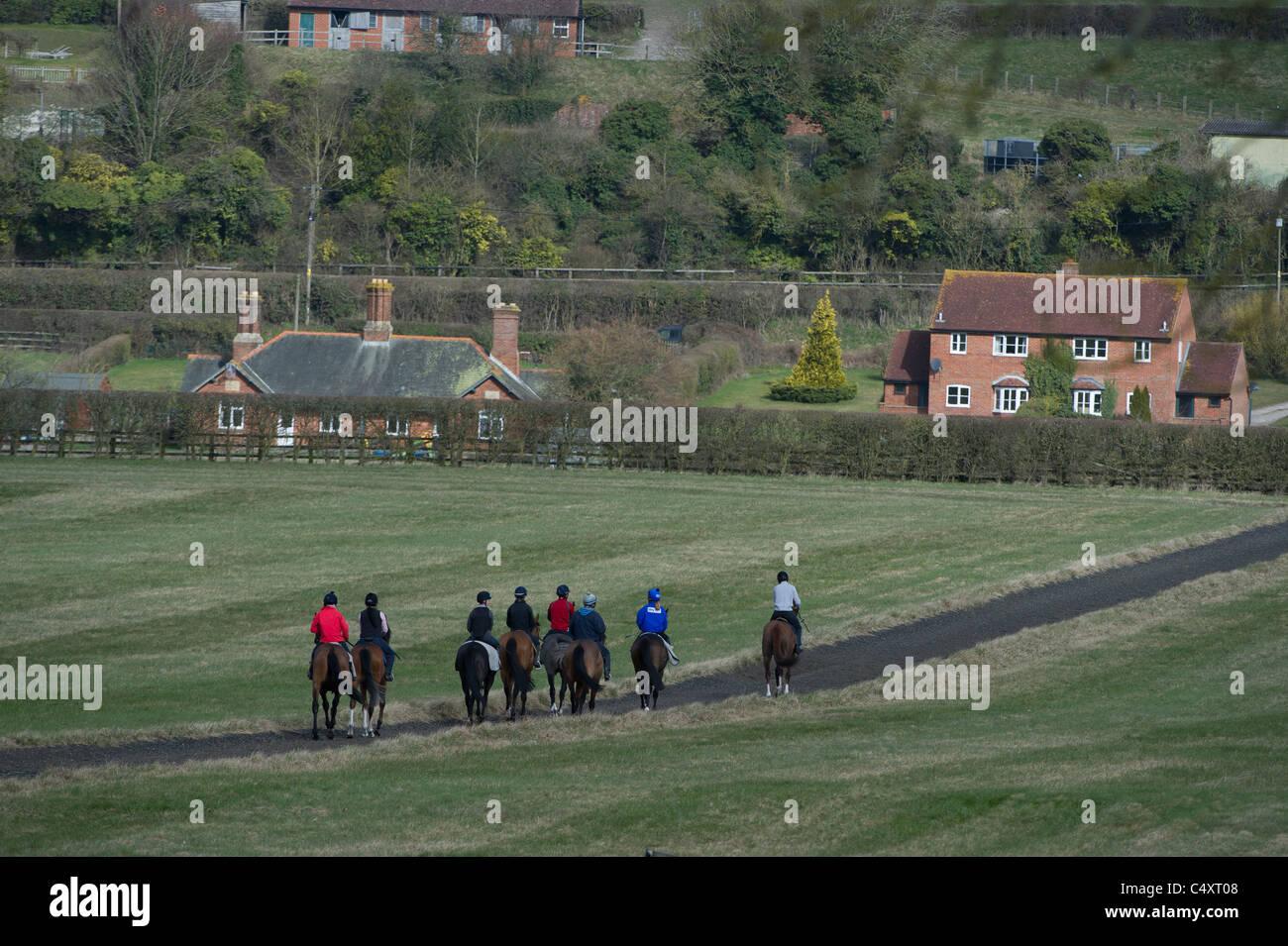 Maneggio e scuola di equitazione Immagini Stock