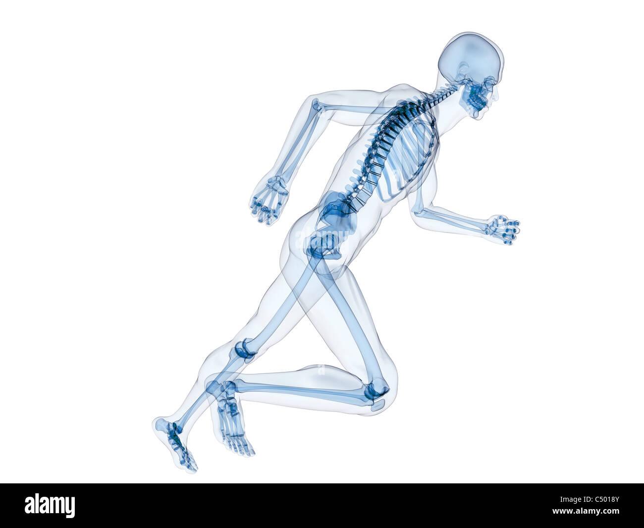 Esecuzione di scheletro Foto Stock