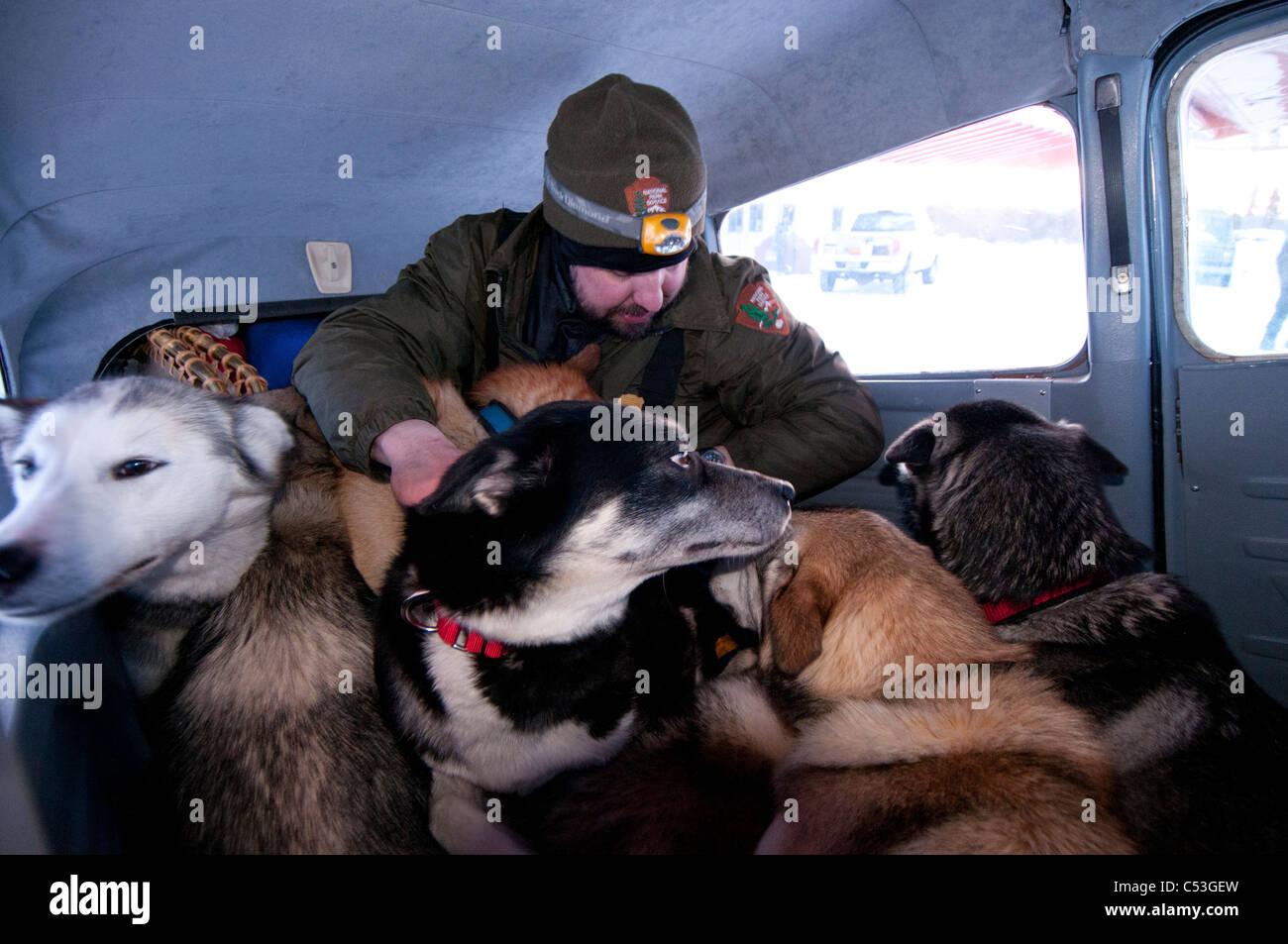 Parco nazionale di servizio carichi di Ranger il suo cane il team in un piano nei cancelli dell'Artico Parco Immagini Stock