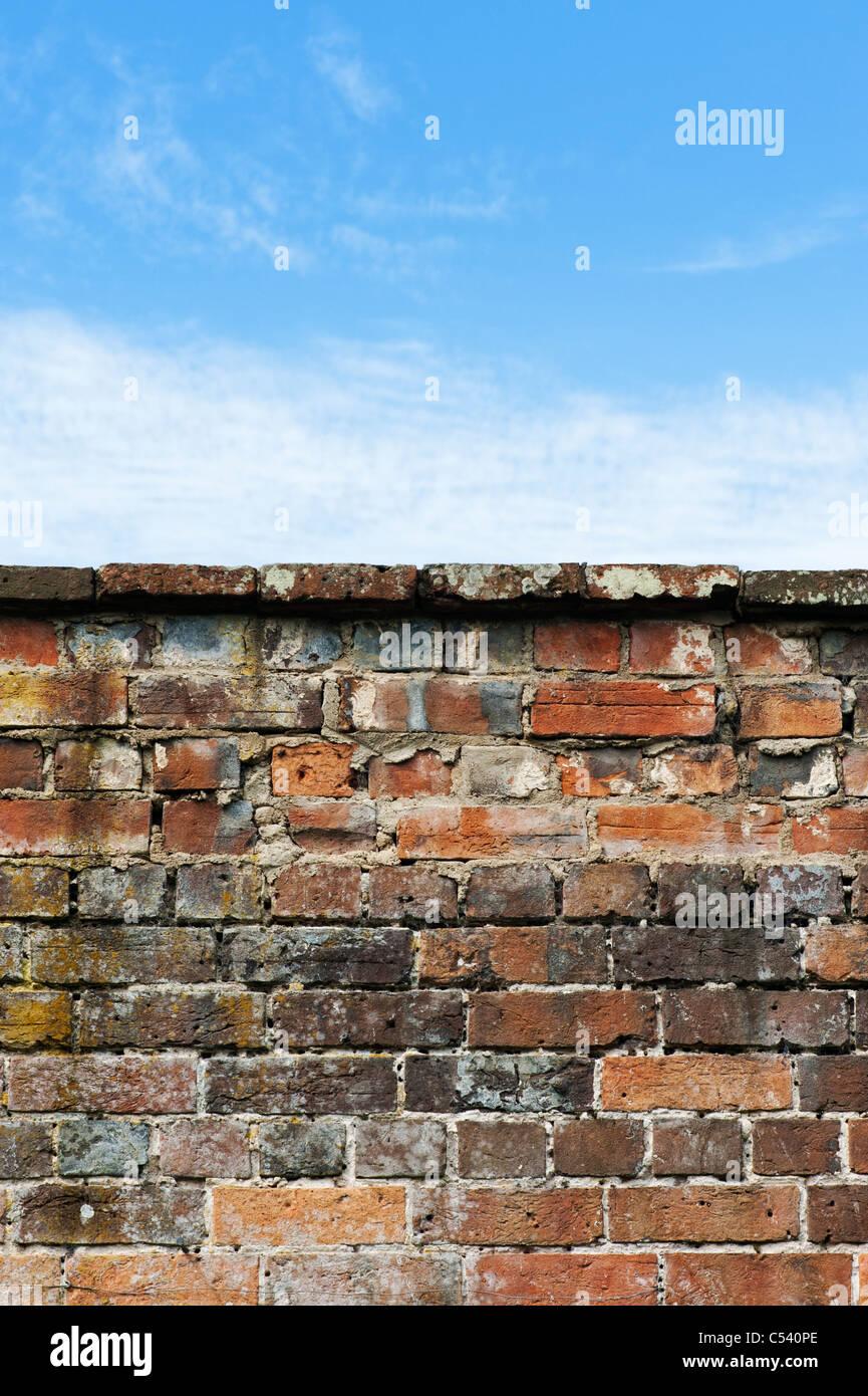 Giardino vecchio muro di mattoni contro un blu cielo nuvoloso Immagini Stock