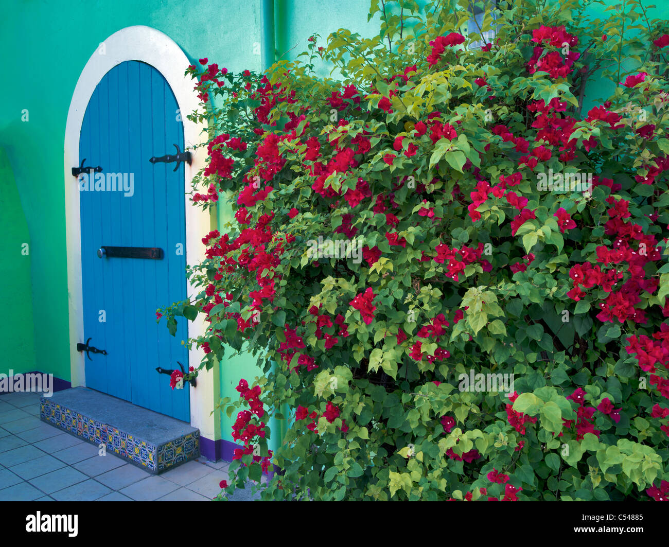 Memorizzare le porte anteriori con Bouganvilla. San Giovanni. Vergine Slands San Giovanni. Isole Vergini. Immagini Stock