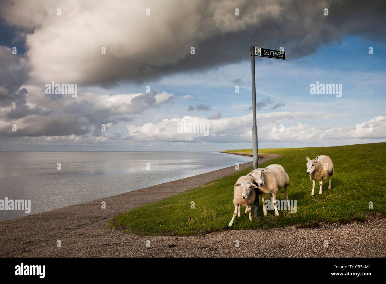 I Paesi Bassi, Buren sull isola di Ameland, appartenente al mare di Wadden Islands. Unesco - Sito Patrimonio dell'umanità. Immagini Stock