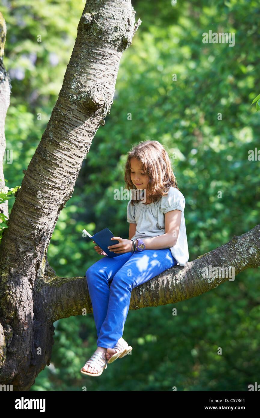 Lettura della ragazza nella struttura ad albero all'aperto Immagini Stock