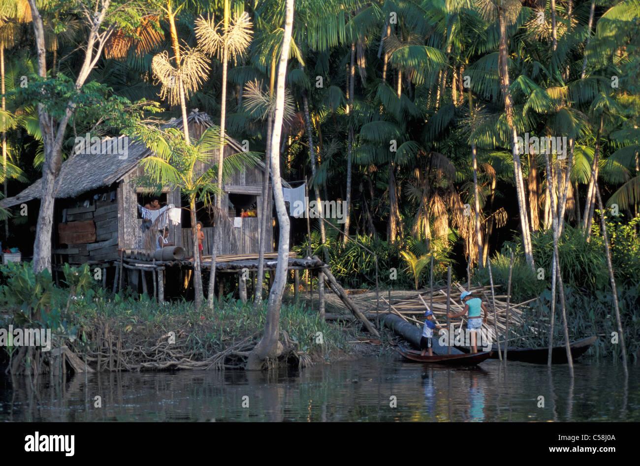Fiume del Amazon, Ilha do Marajo, Amazon Delta, Amazonia, Brasile, Sud America, capanna, Fiume Immagini Stock