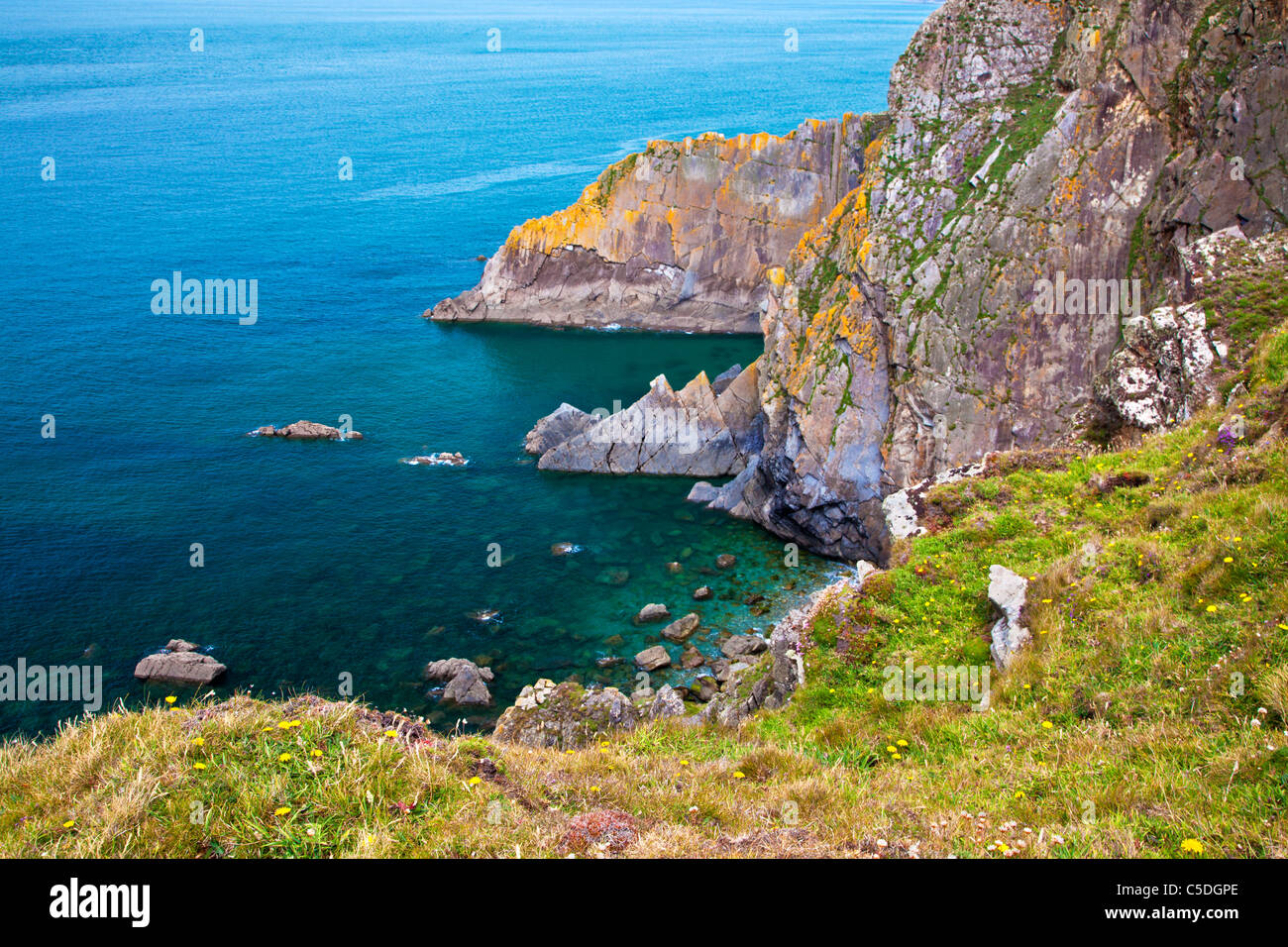 Coste rocciose e scogliere a punto larghi di un promontorio vicino Croyde, North Devon, Inghilterra, Regno Unito Immagini Stock