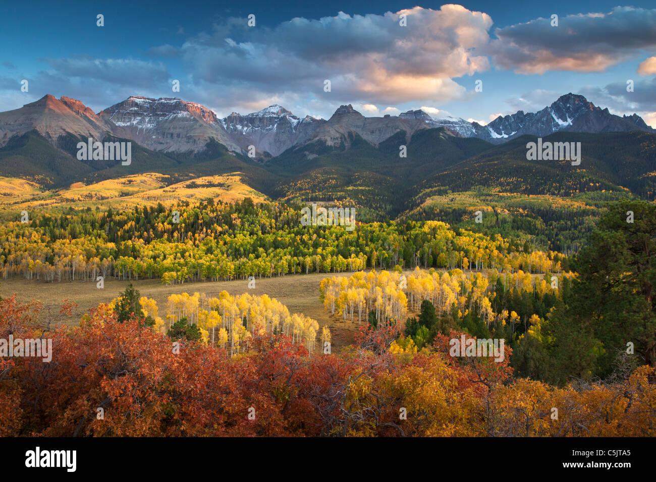 I colori autunnali e la gamma Sneffels, San Juan Mountains, Colorado. Immagini Stock