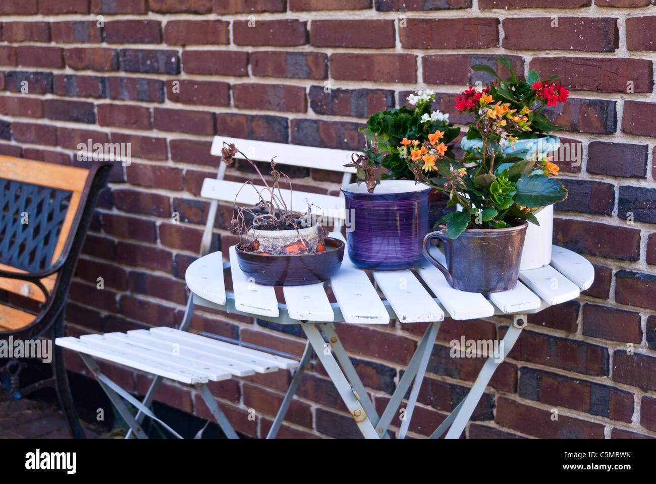Tavoli Da Giardino Decorati.Tavolo Da Giardino Decorato Con Piante Varie Foto Immagine Stock